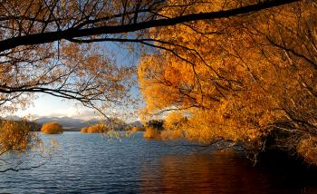 Autumn at Lake Tekapo NZ