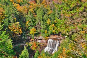 Autumn Blackwater Falls Overlook - HDR