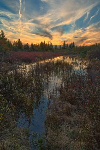 Autumn Dolly Sods Sunset - HDR