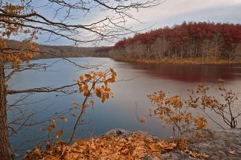 Autumn Fantasy Basin - HDR