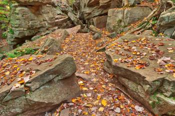Autumn Midway Crevasse - Ricketts Glen HDR