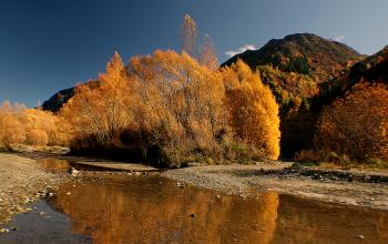 Autumn on the Arrow River NZ