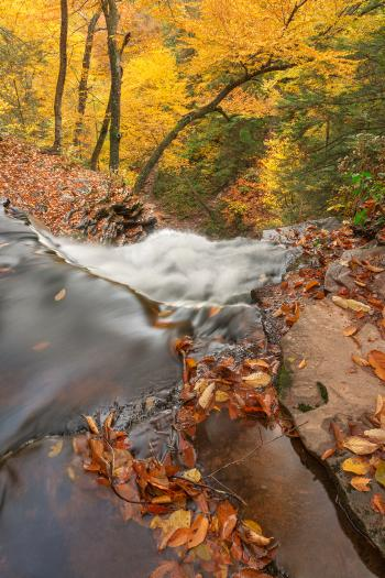 Autumn Waterfall Precipice - HDR