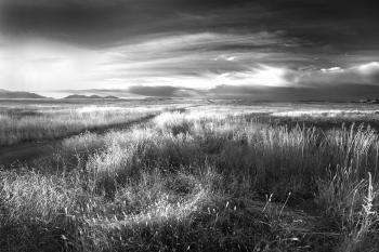 AZ - SAN RAFAEL VALLEY GRASSLANDS, SE of Patagonia, scc (40a)