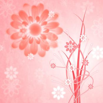Background Pink Shows Bloom Petal And Blooming