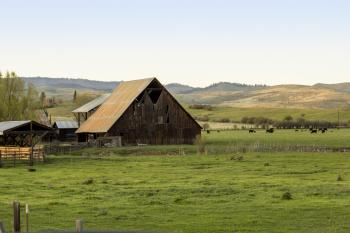 Barn near Richland, Oregon