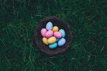 Basket Full Of Eggs