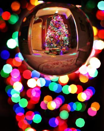 Bauble Reflecting a Christmas Tree