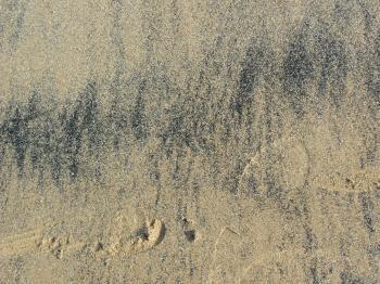 Beach 20