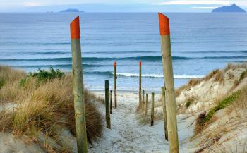 Beach access Ruakaka. NZ