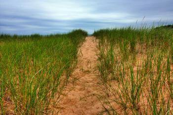 Beach Trail - HDR