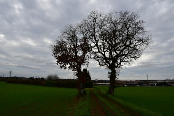 Beaulieu - Le Breuil-Mingot (voir l'itinéraire sur : http://ansozour.free.fr/Beaulieu.html)