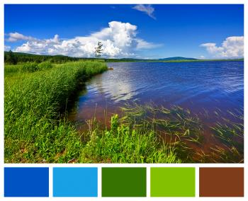 Beaver Brook Color Palette Sampler