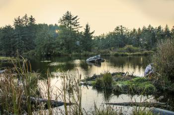 Beaver Creek State Natural Area, Oregon