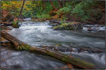 Beaverdams Creek, St. Catharines Ontario