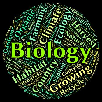 Biology Word Represents Animal Kingdom And Biological