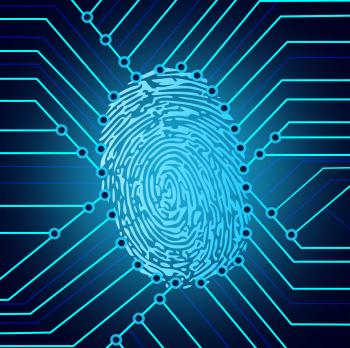 Biometric fingerprint identification