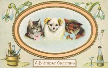 Birthday Greeting Card - Circa 1910s
