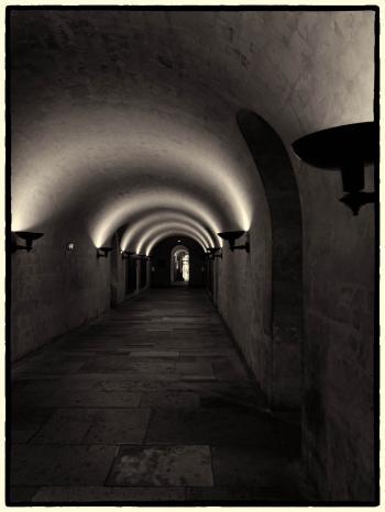 Black and Gray Hall Way