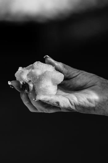 Black-and-white Photo of Hand Holding Snow