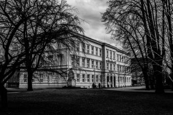 Black and White Picture of Building Surrounded by Trees