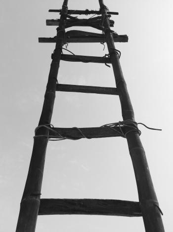 Black Bamboo Ladder during Daytime