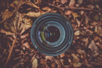 Black Camera Lens on Brown Dried Leaf