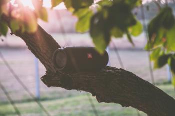 Black Jbl Bluetooth Speaker on Tree Branch