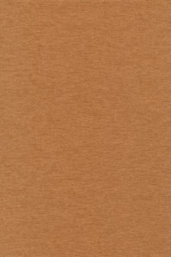 Blank Canvas Texture