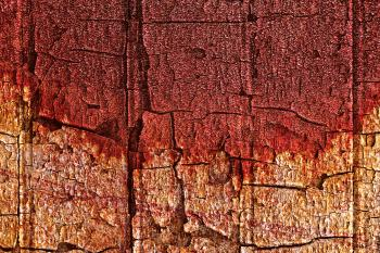 Bleeding Wood Cracks