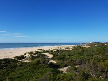 Blick aus Strandhütte