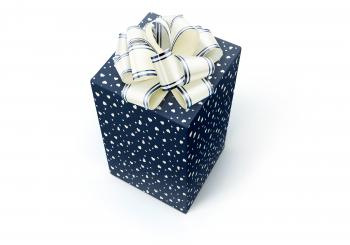 Blue Gift with Ribbon