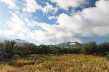 BLUE HAVEN ROAD, along Sonoita Creek, west of Patagonia, Az (9-23-10) (4)