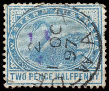 Blue Swan Stamp