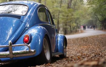 Blue Volkswagen Beetle Vintage Car Surrounded by Dry Leaves during Daytime