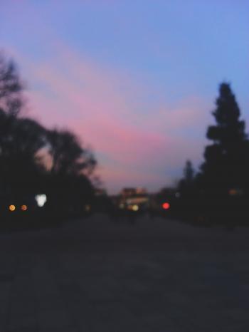 Blurry Ruse
