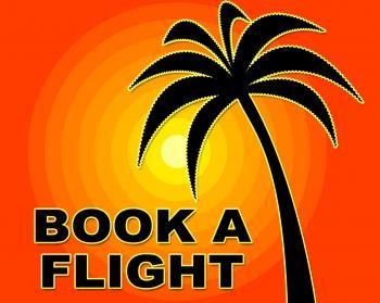 Book Flight Indicates Flights Aeroplane And Ordered