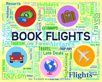 Book Flights Shows Ordered Airplane And Reservations