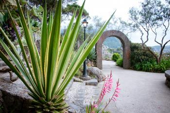 botanical garden La Mortella, Ischia isl