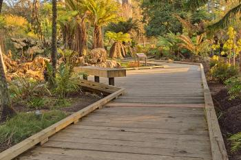 Botanical Gardens Boardwalk - HDR