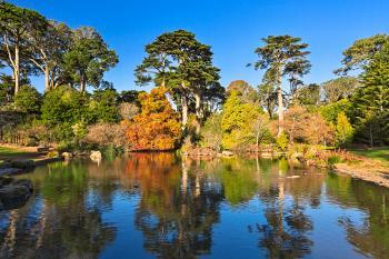 Botanical Gardens Pondscape - HDR