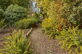 Botanical Gardens Trail - HDR