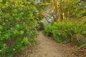 Botanical Gardens Trail - HDR