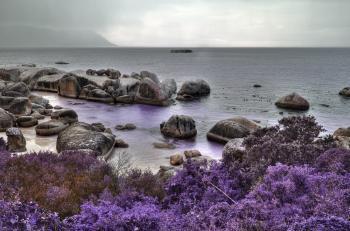 Boulders Lavender Beach - HDR