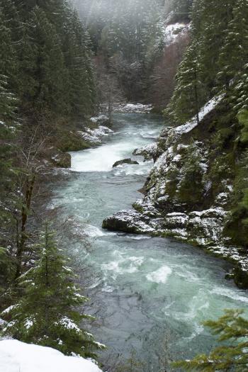 Breitenbush River, Oregon