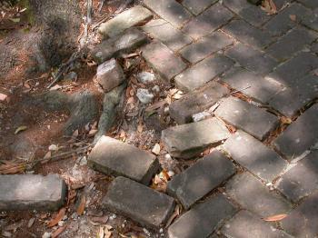 Brick walking path