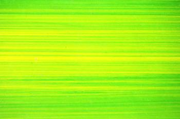 Bright Green Lines Background