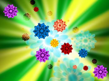 Brightness Flowers Background Shows Petals Blossoms And Pretty