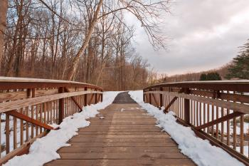 Brookside Winter Bridge