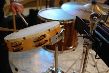 Brown and White Tambourine